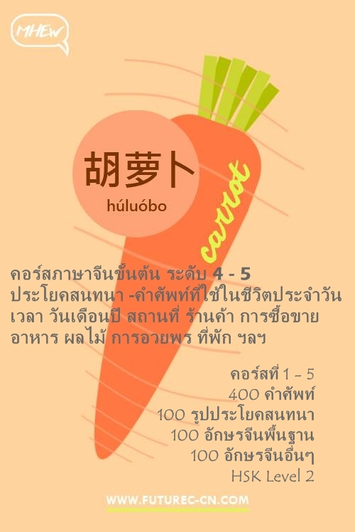 Carrot FB Basic 4 -5 (2)